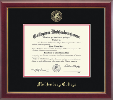"EMBOSSED ""GALLERY"" EDITION DIPLOMA FRAME"